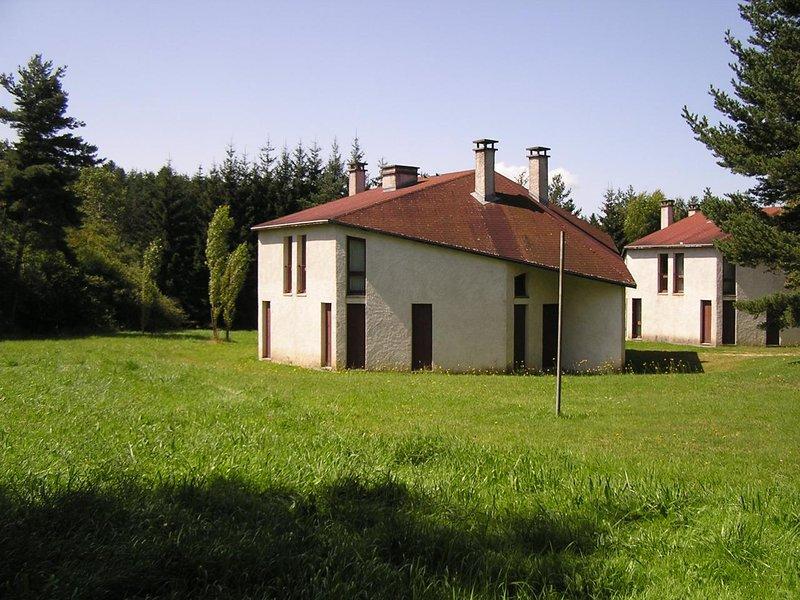 House in La Chapelle-Geneste, holiday rental in La Chaise-Dieu