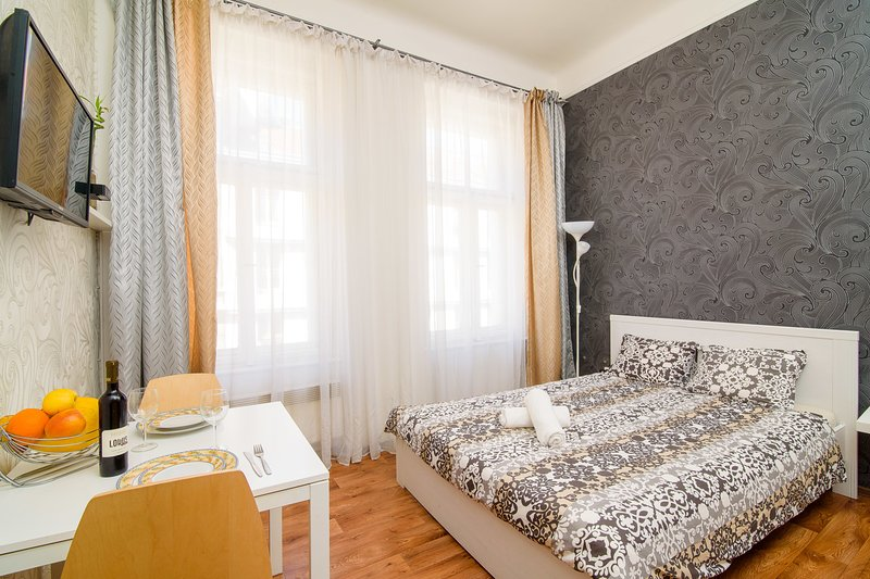 AFRODITA-Your Home in Prague, in city center, vacation rental in Prague