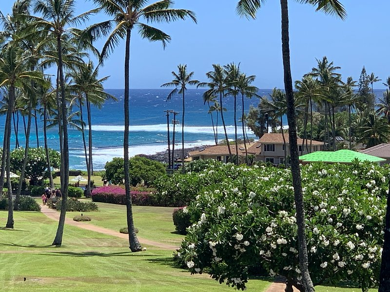 Your stunning view from the lanai