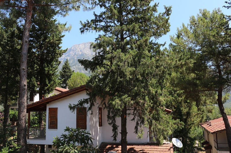 Forest Villa on Olympos Mountain Close To The Sea, holiday rental in Beycik