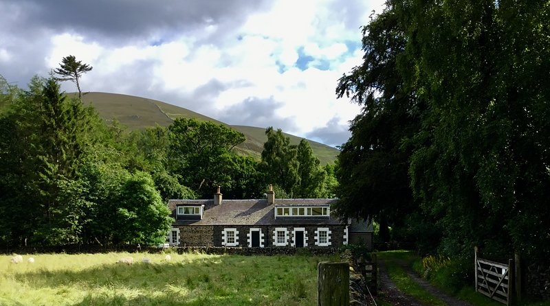 Tranquil jewel in secluded valley. Huge south garden. Dogs, Bikes. Peebles 4 m. – semesterbostad i Biggar