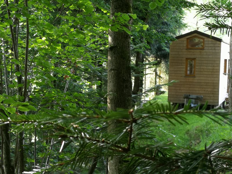 Tiny House nature, holiday rental in Fraize