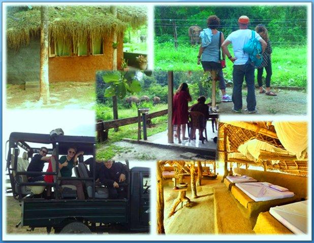 Udawalawa National Park Safari Hotel & Restaurant, holiday rental in Embilipitiya