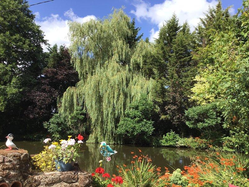 lago magico con bellissimi alberi e colori gloriosi!