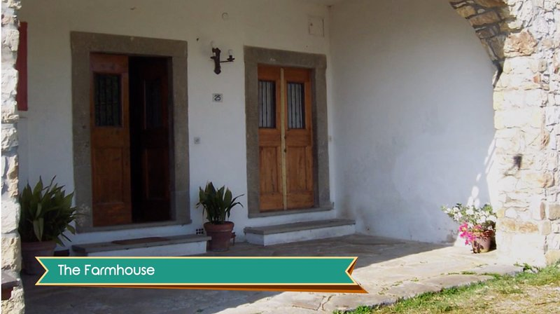 Apartment: 3 rooms in amazing fully refurbished stable., holiday rental in Pratolino