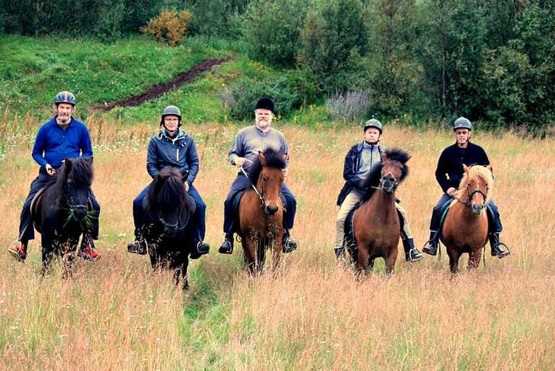 A farm with icelandic horses and access to salmon fishing with accommodation., holiday rental in Lakselv