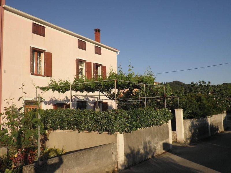 Two bedroom apartment Preko, Ugljan (A-14163-b), holiday rental in Preko