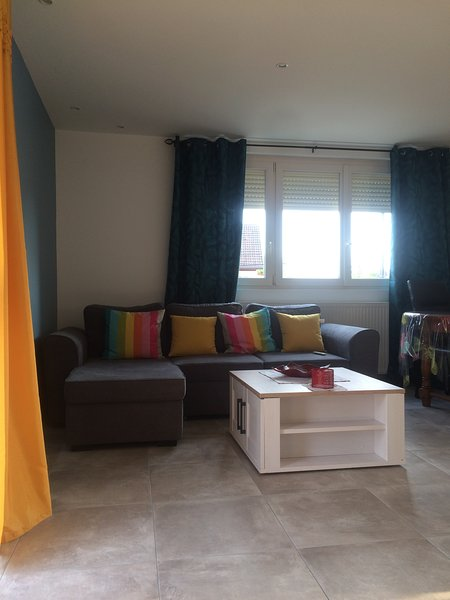 Beautiful house with terrace & Wifi, holiday rental in Pontailler-sur-Saone