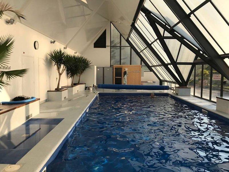 swimining pool with jacuzzi and sauna!