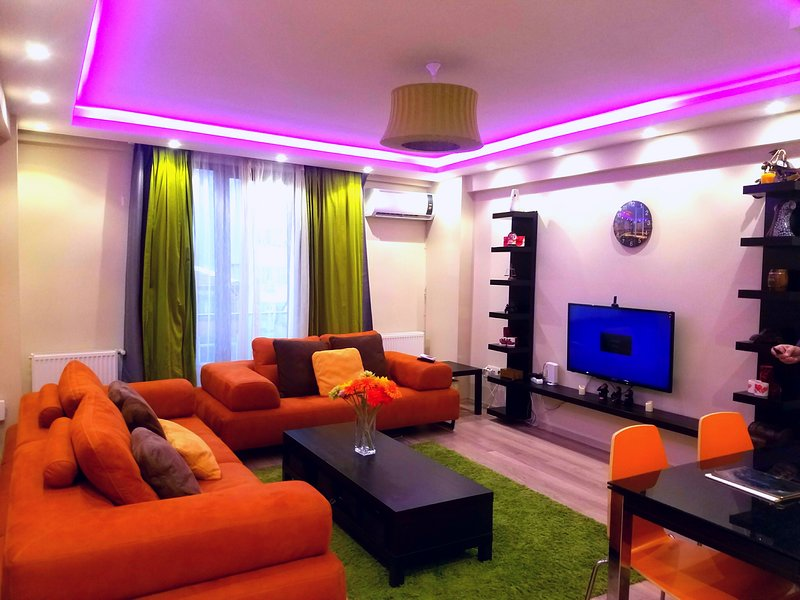 1+1 cozy and stylish apartment at the hart of istunbul, holiday rental in Istanbul