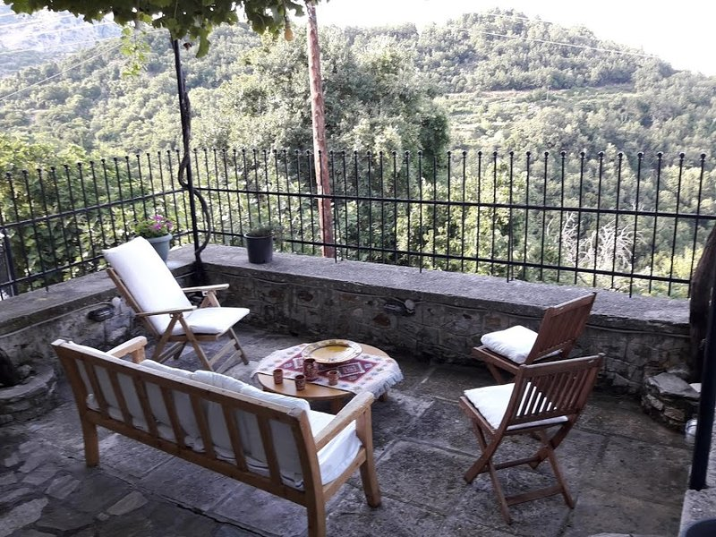 Modern mountain house, holiday rental in Anavryti