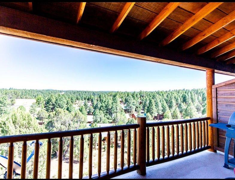 Elegant 2 Beds / 2 baths near Fool Hollow Lake with Wonderful Views, vacation rental in White Mountain Lake