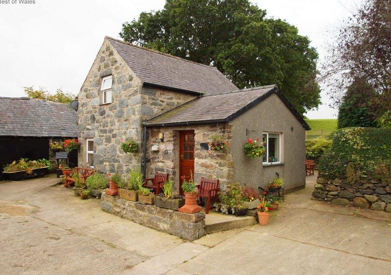 Bwthyn Conwy, holiday rental in Tyn-y-Groes