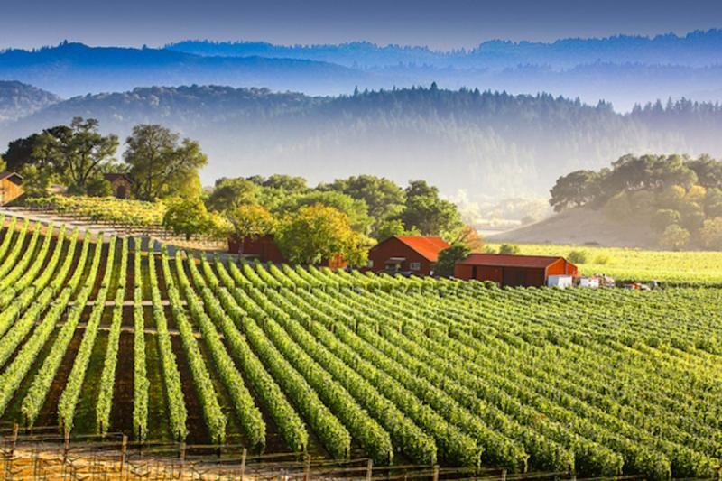 Short drive to wineries of Sonoma and Napa