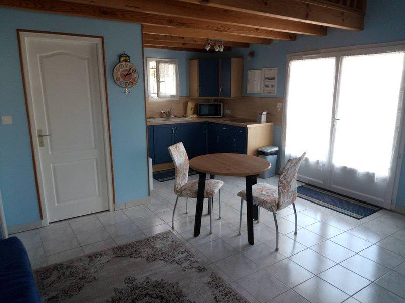 Beautiful studio with terrace, holiday rental in Saint Pierre de Juillers