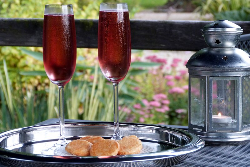The Not Raw - Aperitif on the decking