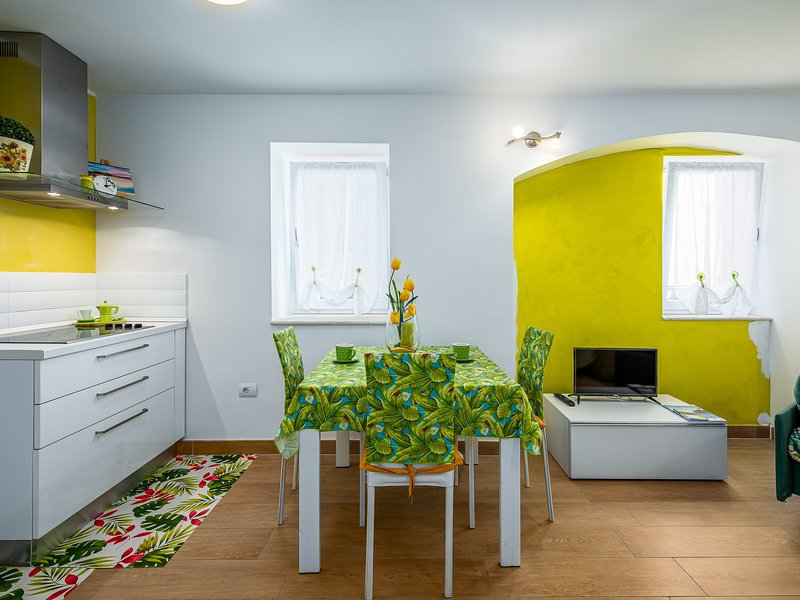 Apartment Green Day, holiday rental in Novigrad