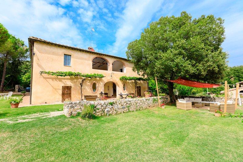 Beautiful  tuscan Villa not far from Siena 14+2pax, holiday rental in Siena