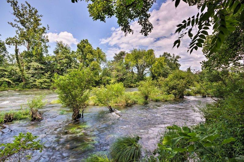Cammina verso il fiume Watauga e goditi le attività ricreative lì.