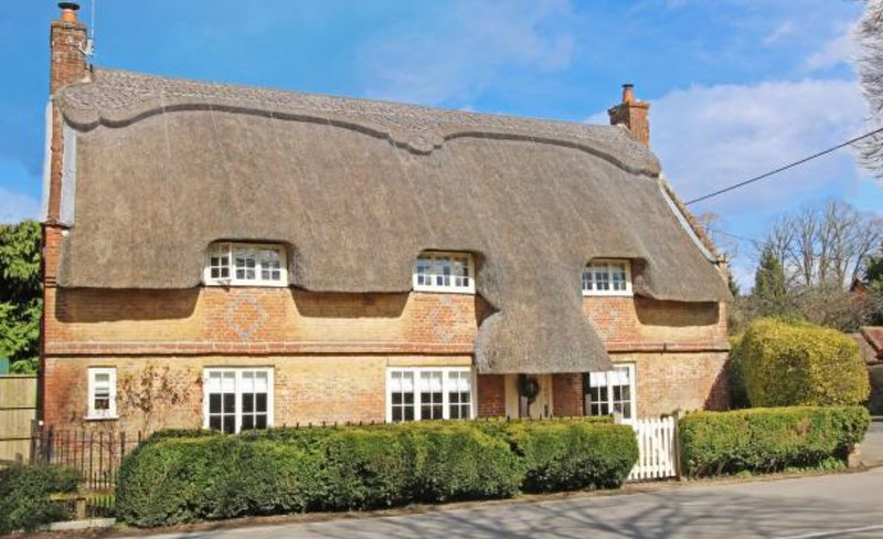 The Thatched Cottage Cranborne, holiday rental in Horton