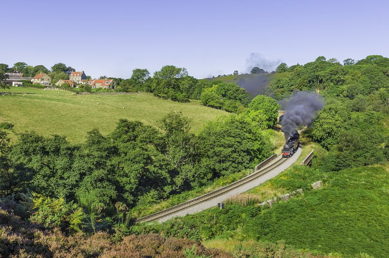 Take the steam train and see the wonderful countryside through the North Yorkshire Moor's