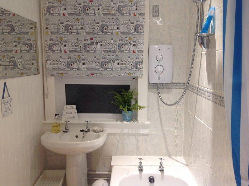 Bagno con vasca da bagno con doccia elettrica.