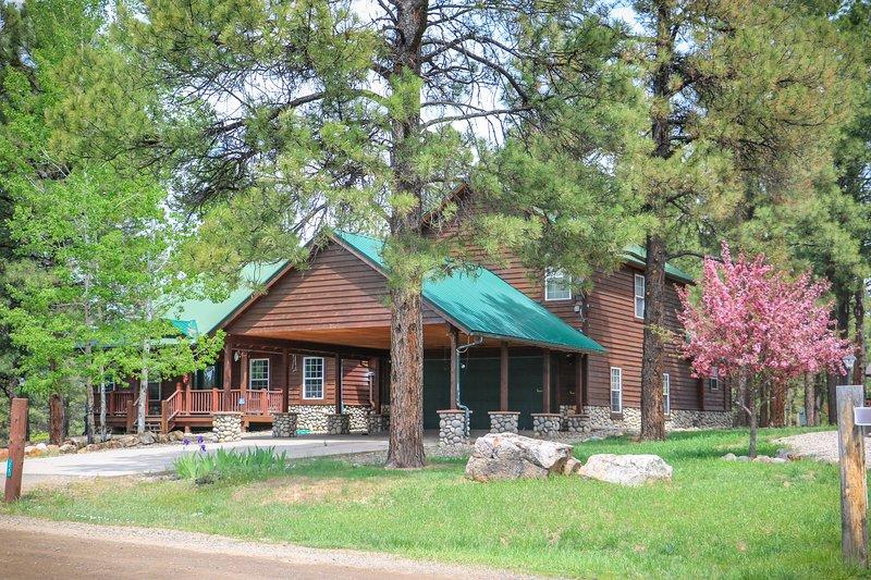 Spacious Lakeside Lodge w Lake & Mtn views-Hot Tub, holiday rental in Chimney Rock