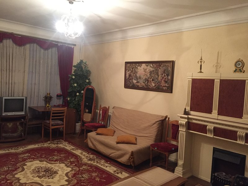 2 room apartment, near the Golden Gate, in the historical center of Kiev, vacation rental in Irpin