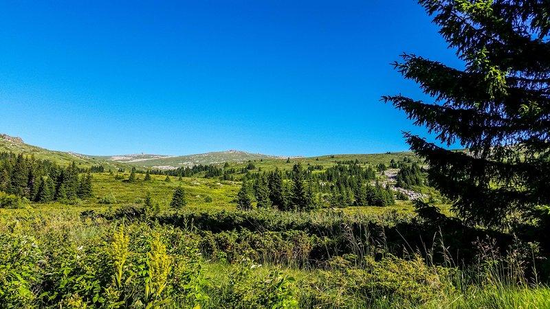 Mountain Villa Suite With Amazing View Of Vitosha, vacation rental in Vladaya