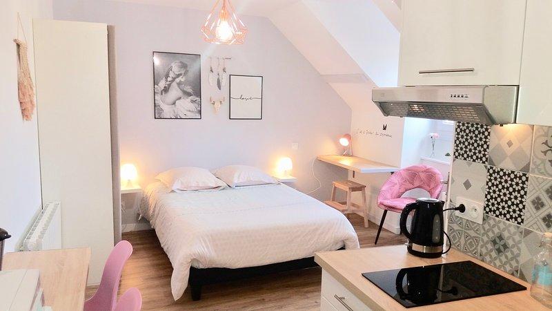 Appartement* Cocoon Chic, au coeur du Centre Ville, vacation rental in Saint-Brieuc