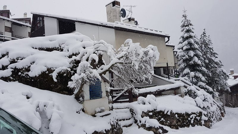 Boiserie, holiday rental in Campitello di Fassa