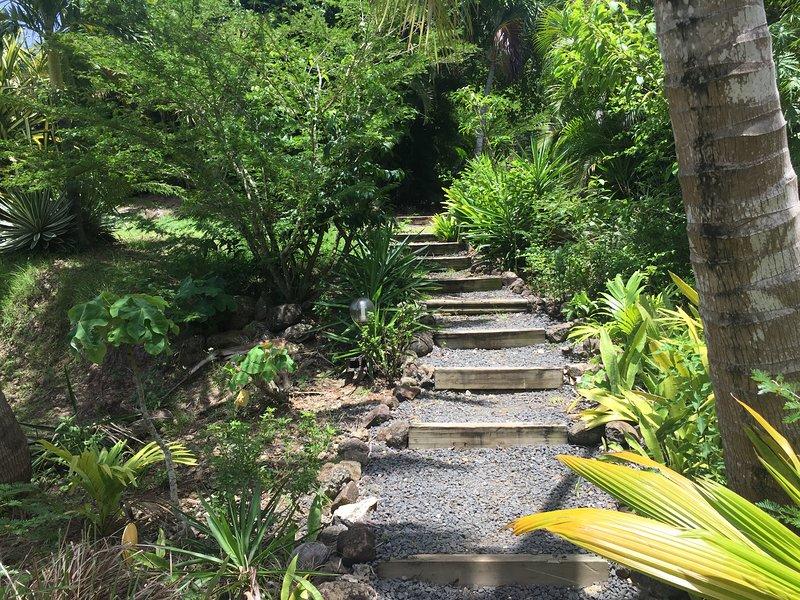 Marches d'escaliers : accès au gîte.