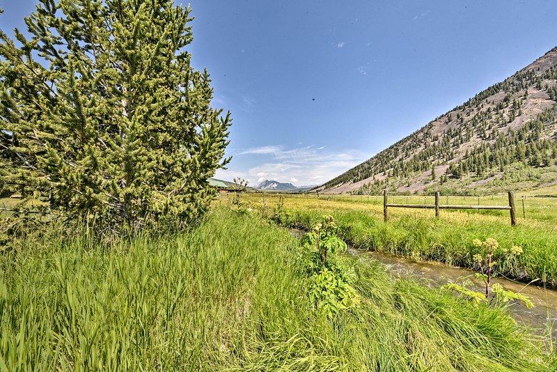 Qu'il s'agisse d'une vue sur la montagne, la forêt ou la rivière, vous ne voudrez pas manquer!