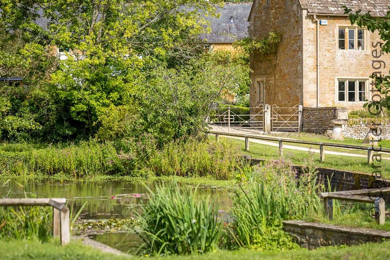 The delightful village green is home to a wonderful nature pond, thriving with wildlife!