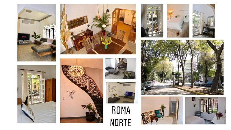 House romita, vacation rental in Mexico City