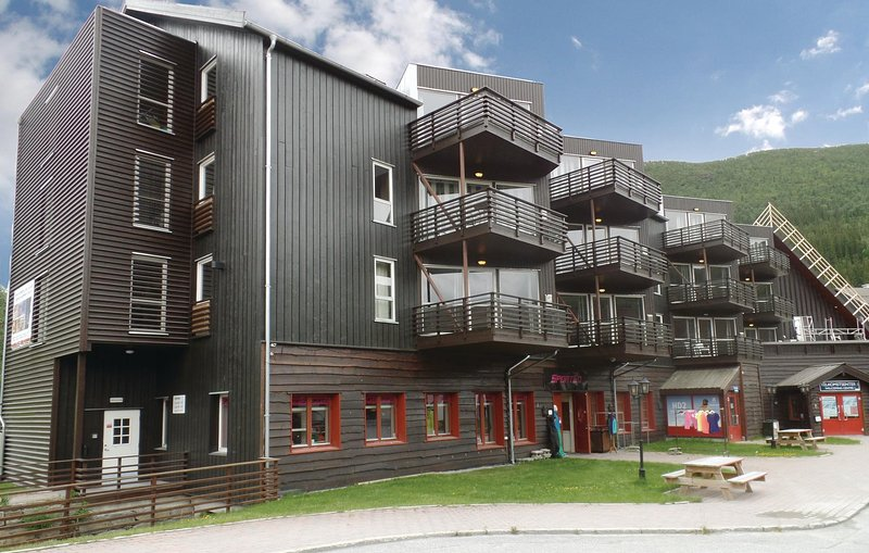 Nice home in Hemsedal w/ Sauna, WiFi and 3 Bedrooms (N33953) Chalet in Hemsedal