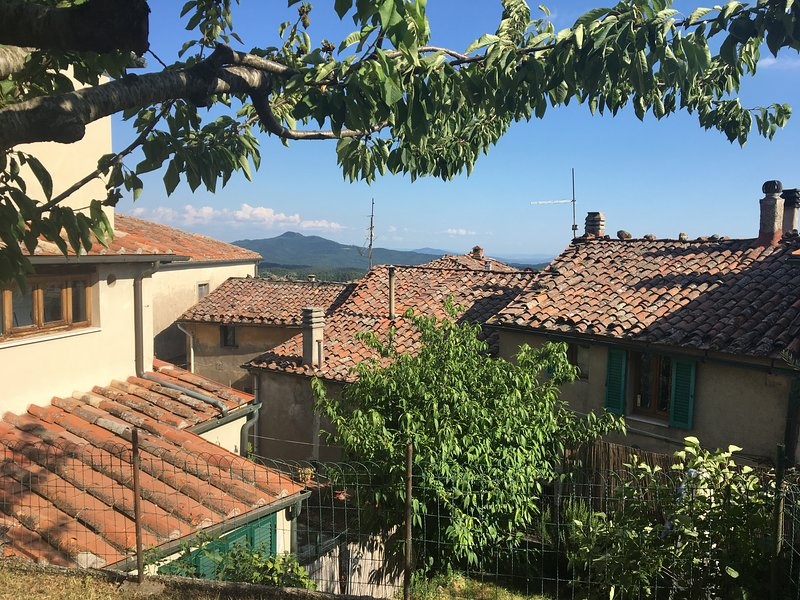 Casa Amici: apartment with great garden in hill top village, holiday rental in Boccheggiano