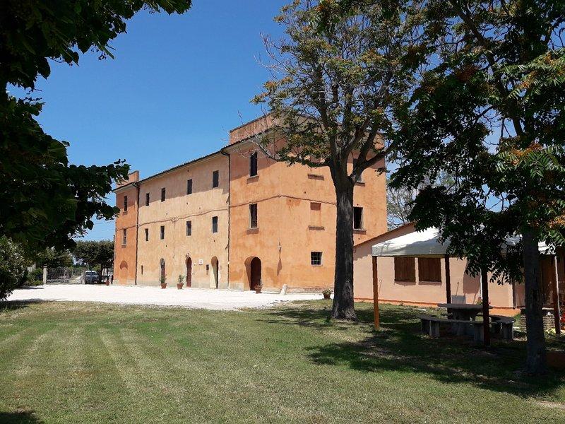 Lavanda - Agriturismo Il Pescinone sulla Costa degli ...
