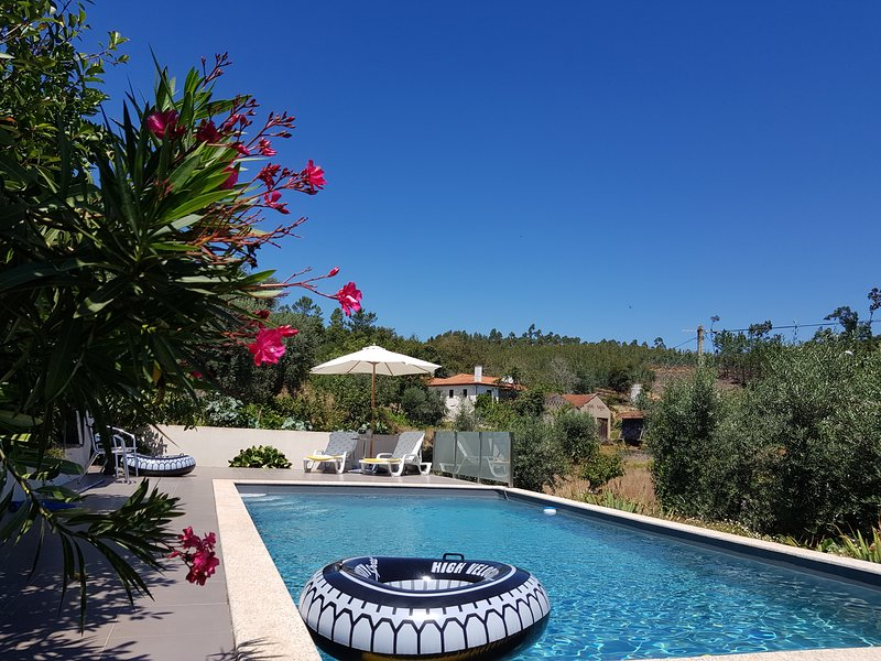 Casa do Limao - beautiful rural & traditional Portuguese villa with private pool, location de vacances à Santa Comba Dao