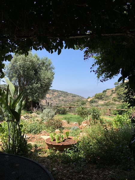 Enjoy magnificent views of the adjacent nature reserve while sitting in the naturally shaded pergola