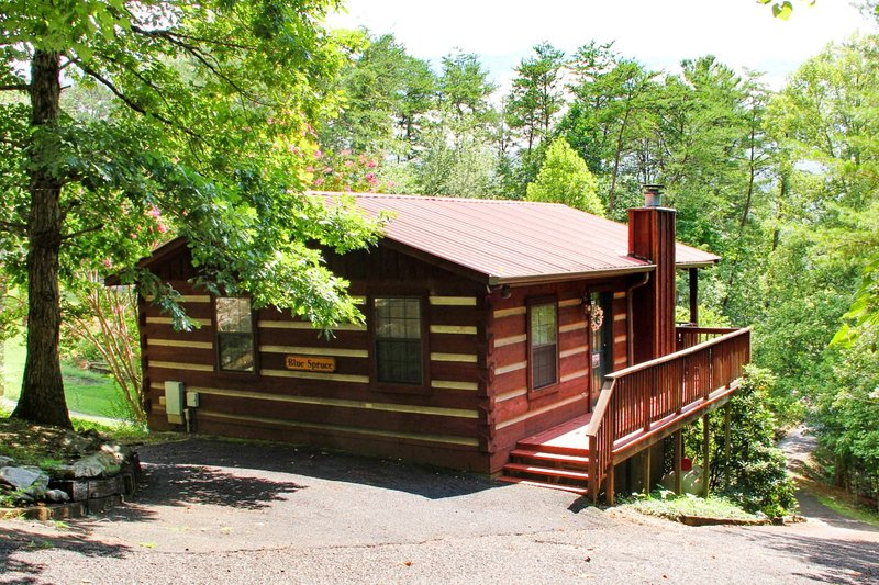 Romantic 1/1 cabin in the Smokies - Blue Spruce, vacation rental in Townsend