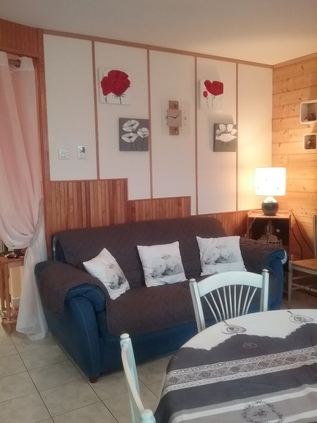 Amazing apartment near the beach, holiday rental in Liezey