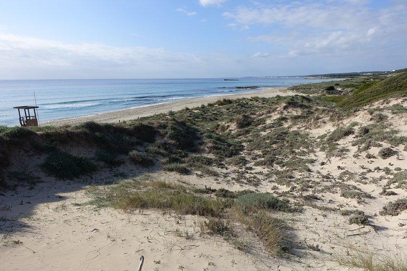 altre spiagge vicine