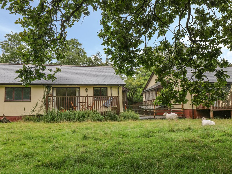 WOODPECKER, open plan, lake views, WIFI, Ref 955405, vacation rental in Clawton