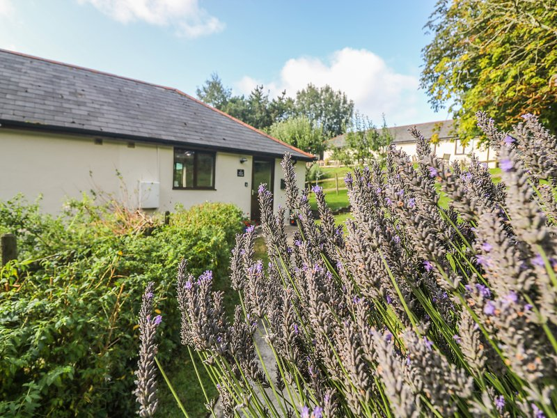HAZEL COTTAGE, ground-floor, shared use of indoor heated swimming pool, close, holiday rental in Poughill