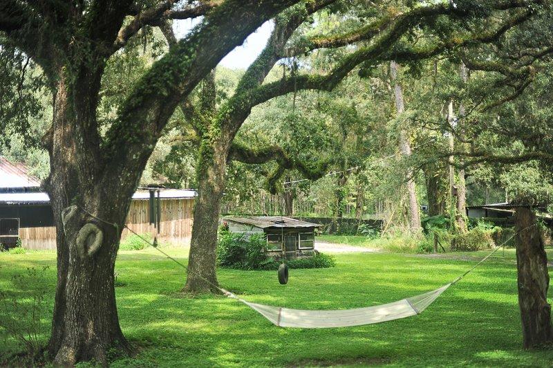 The Harmony Oaks Homestead - Florida Cottage Rental, vacation rental in Brooksville