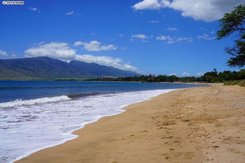 Una de las mejores playas de Maui justo al otro lado de la calle.