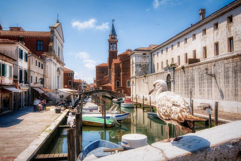 Leo's Dream House - Casa Vacanze Sottomarina di Chioggia Ve, location de vacances à Chioggia