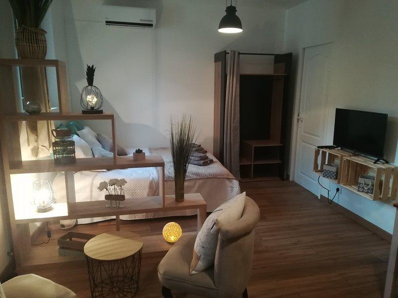 L'appart Montignac, vacation rental in Aubas