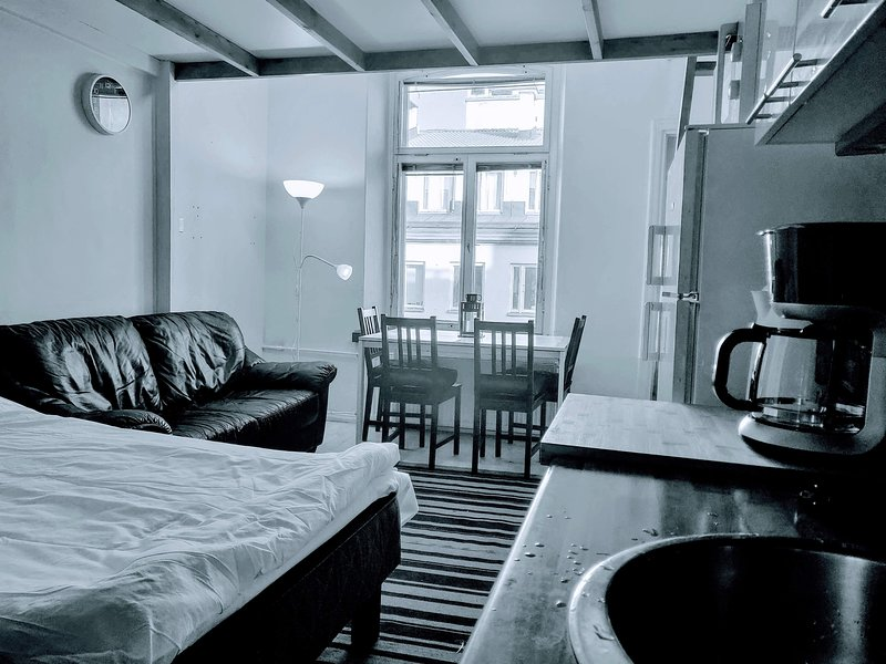 NEW Helsinki city centre historic studio + loft, holiday rental in Western Finland